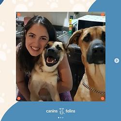 Canins-mas-visto.png