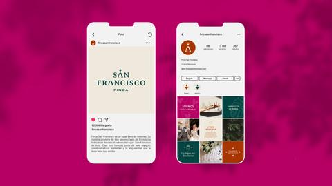 Instagram-Finca-San-Francisco.png