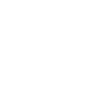 Tubos blancos-01.png