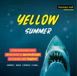 HH-Campaña Yellow Summer_Mesa de trabajo 1 copia.PNG