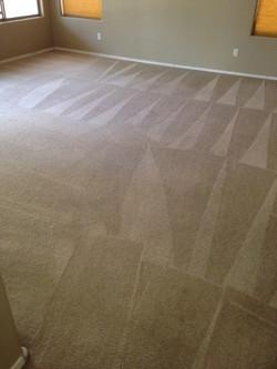 After- Clean Carpet