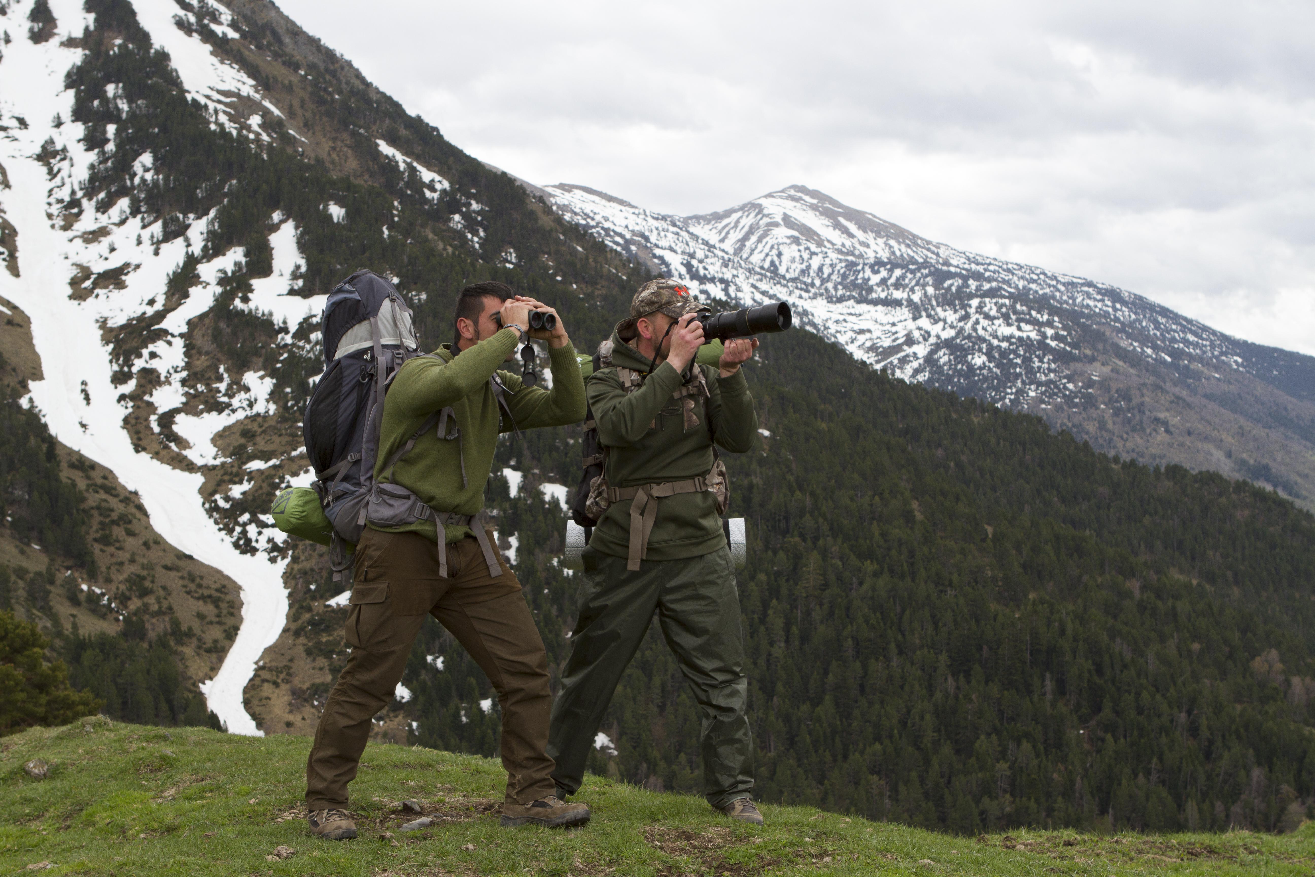 Fotografos de osos