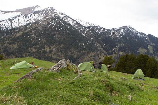 Campamento expedicion oso pardo pirineo