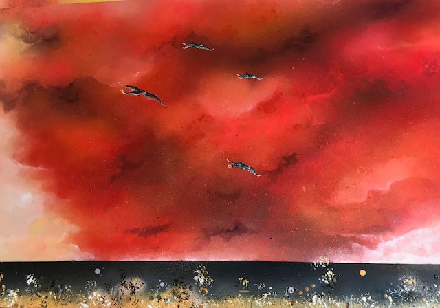 Seabirds and Sunset Clouds