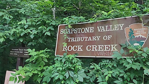 Meditation Hike on the Soapstone Trail