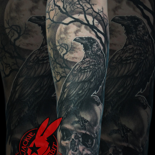 Raven Crow Perched Sitting Skull Full Mo