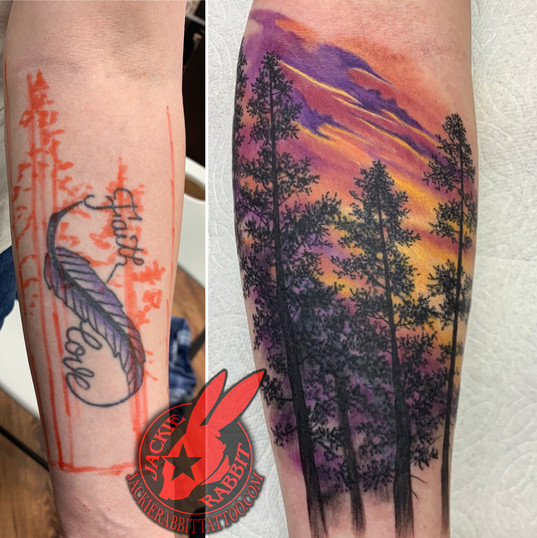 Cover Up Trees Sunset Color Forest Reali