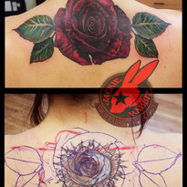 Red Rose Flower 3d Realistic Color Real