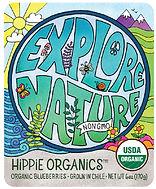 cultivate creativity, produce, blueberries, organics, farm, blueberry, explore, natue