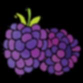 blackberries.png