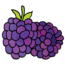 blackberries.png
