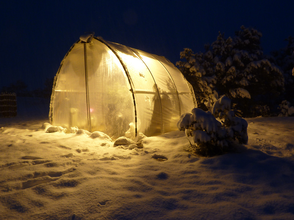 Greenhouse in snow.