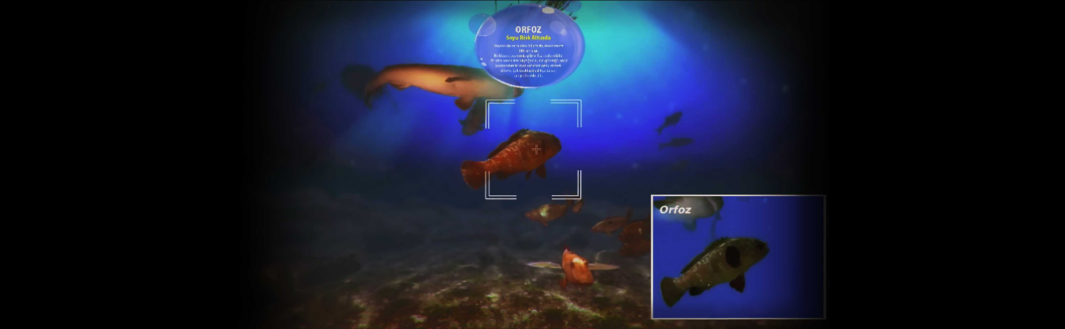 Virtual Life Sea Simulator in Museum