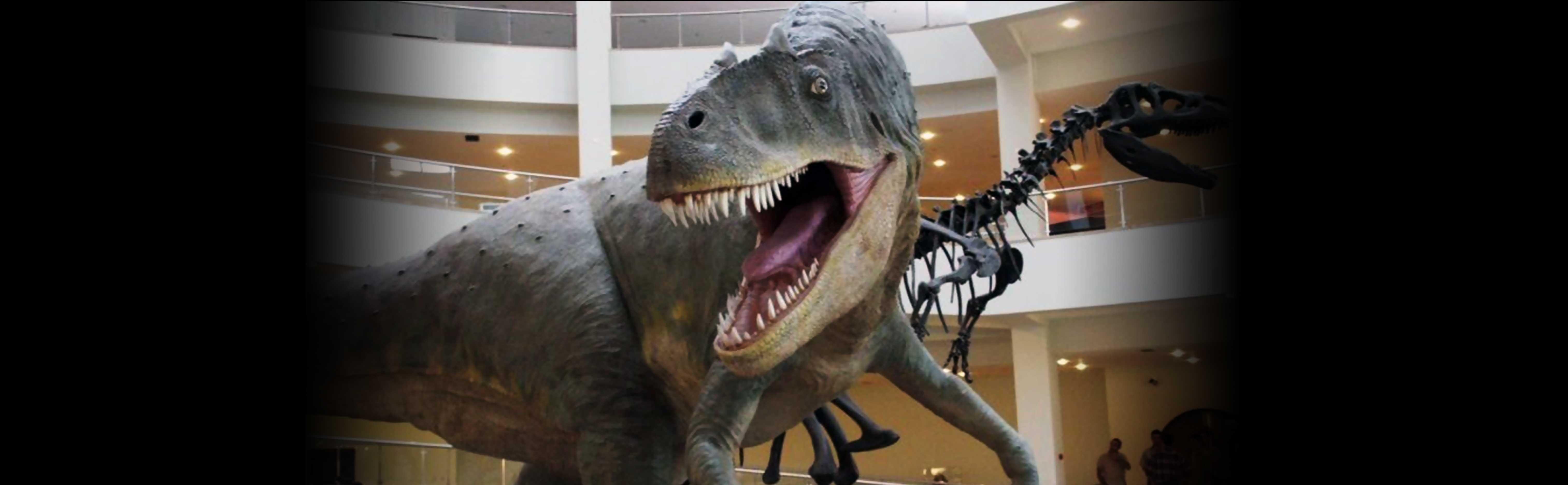 Dinosaur MTA Museum
