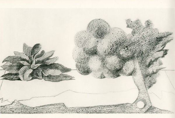 Histoire-Naturelle-de-Max-Ernst_1926_int