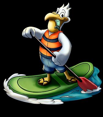 pelican-01.png