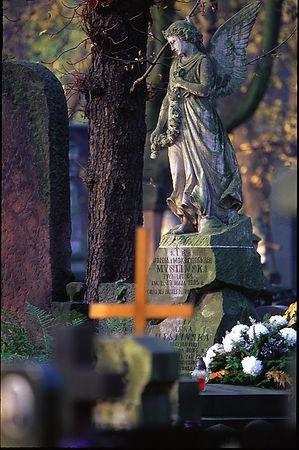 hroby 2.jpg