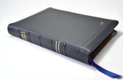 Thompson Chain bible