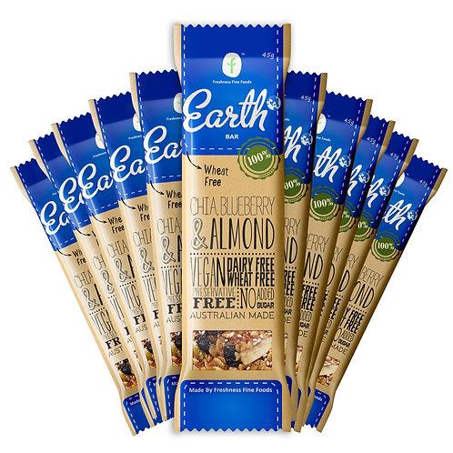 Earth Bar x 12