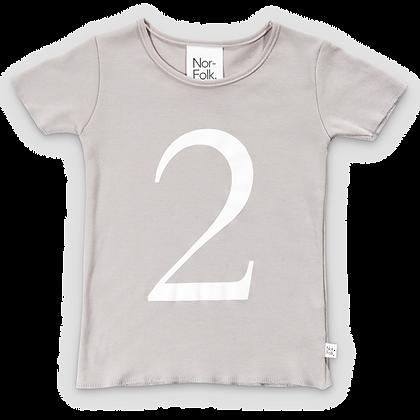 חולצת יומהולדת 2 אפורה