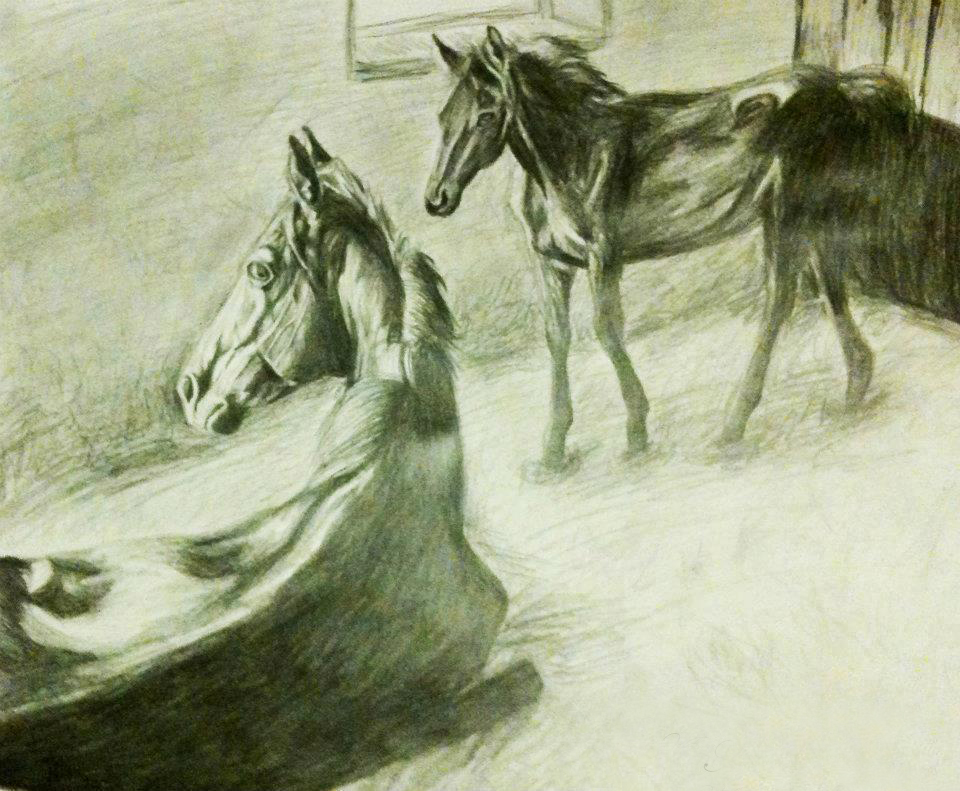 Mare and Foal Drawing