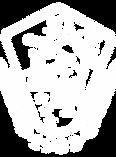 AYF-logo_White.png