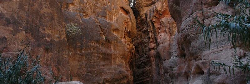 Siq at Petra