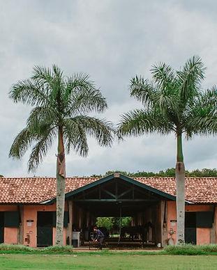 Quinta da Baroneza (Imóveis - Casas e Terrenos) Venda e Locação