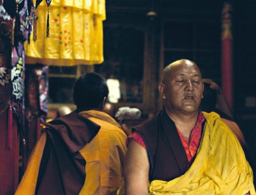 Monks in Yellow Pray