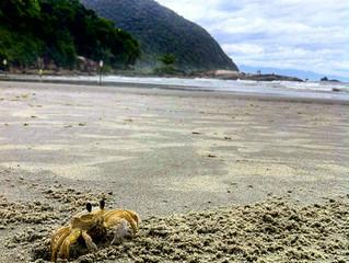 Melhores destinos, Praia do Iporanga