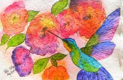 Hummingbird - Pen and Ink Watercolor