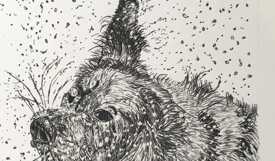 Shake! Shake! Shake! (dog - graphite).jp