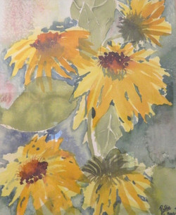 Texas Sunflowers - Watercolor