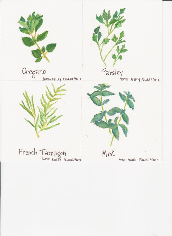 Herbs 2 - Watercolor