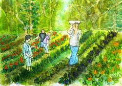 My Favorite Farmers - Pen and Ink Watercolors
