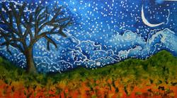 Night sky, starry night