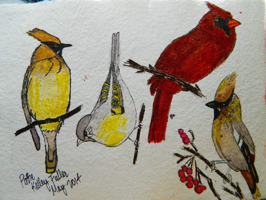 Birds - Pen and Ink Watercolor