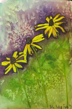 Three yellow daisies