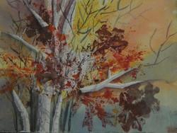 autumn birch trees sunset palette