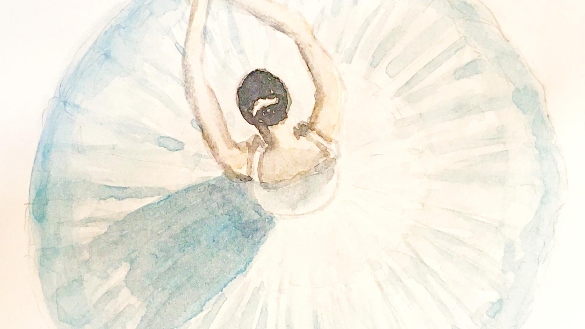 Ballerina - watercolor_edited.jpg