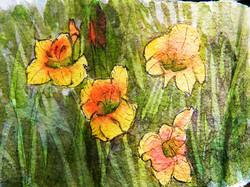 Bright Gladiolas - Pen and Ink Watercolor