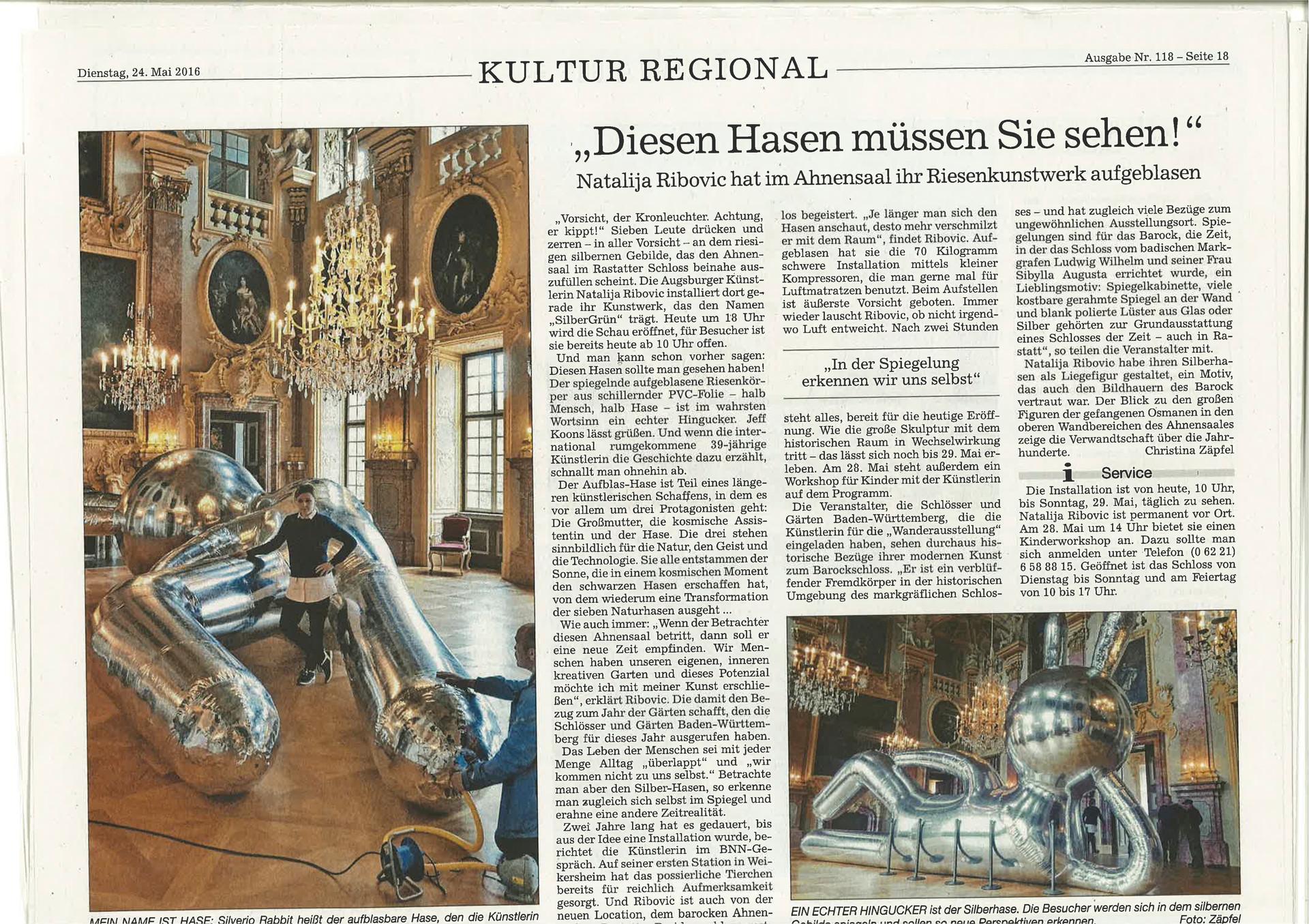 Bericht Badische Neuste Nachrichten(1).j