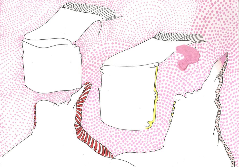 VOLO paper, fineliner, polychromos  fineliner, polychromos 21cmx29.7cm © Natalija Ribovic 2019