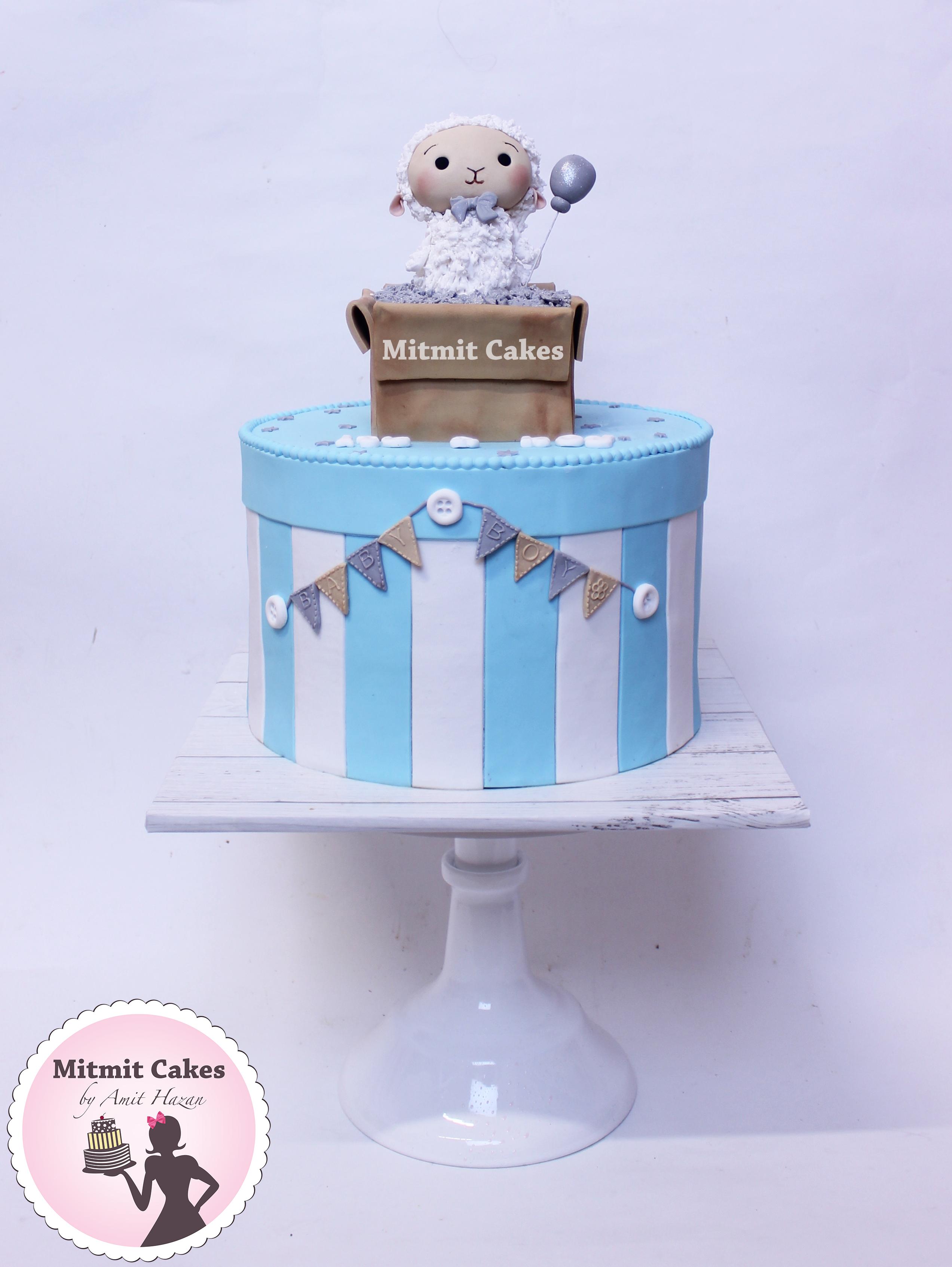 עוגה כבשה