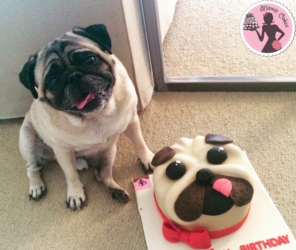 עוגת פאג