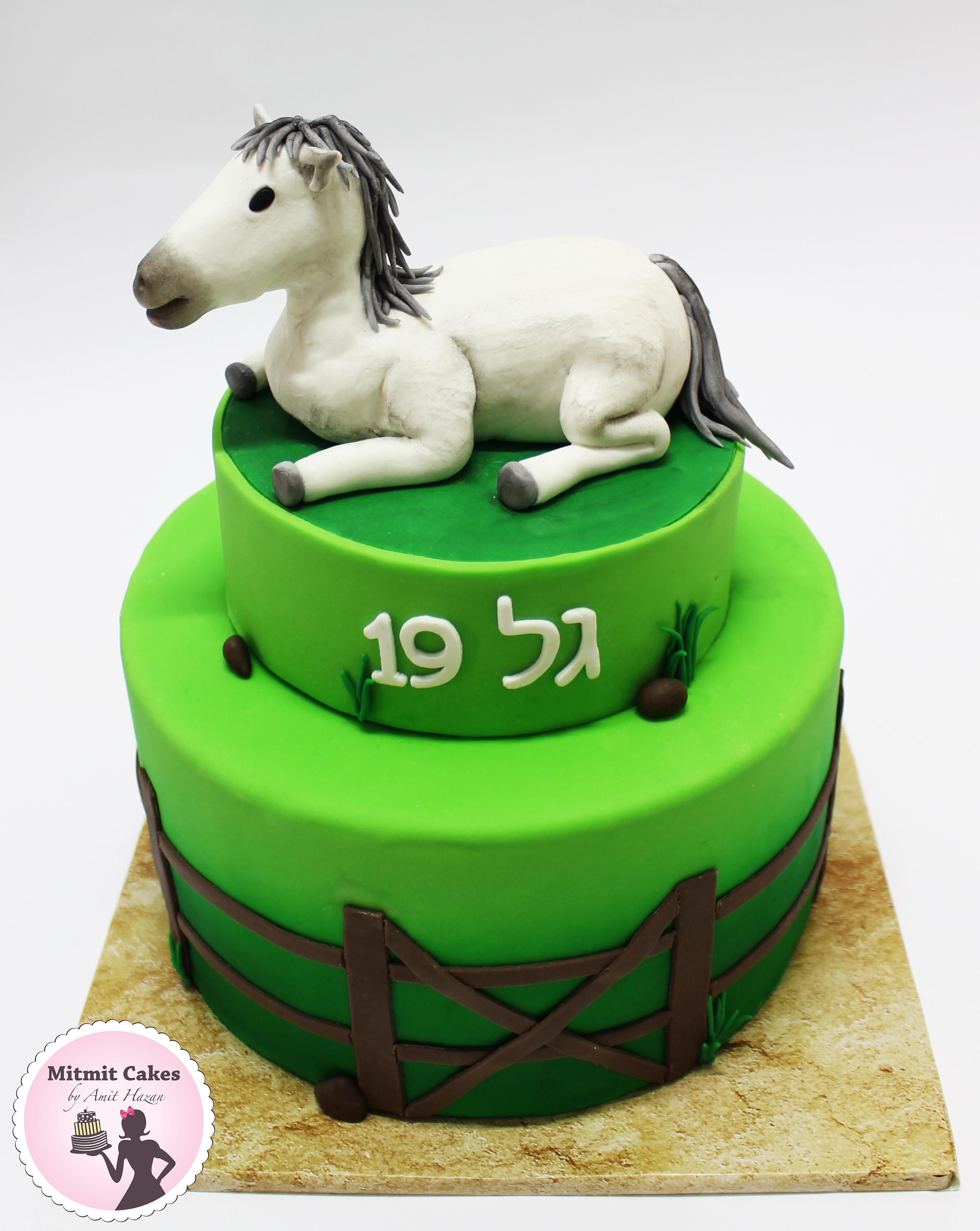 עוגת סוס