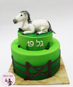 עוגה עם סוס לבן