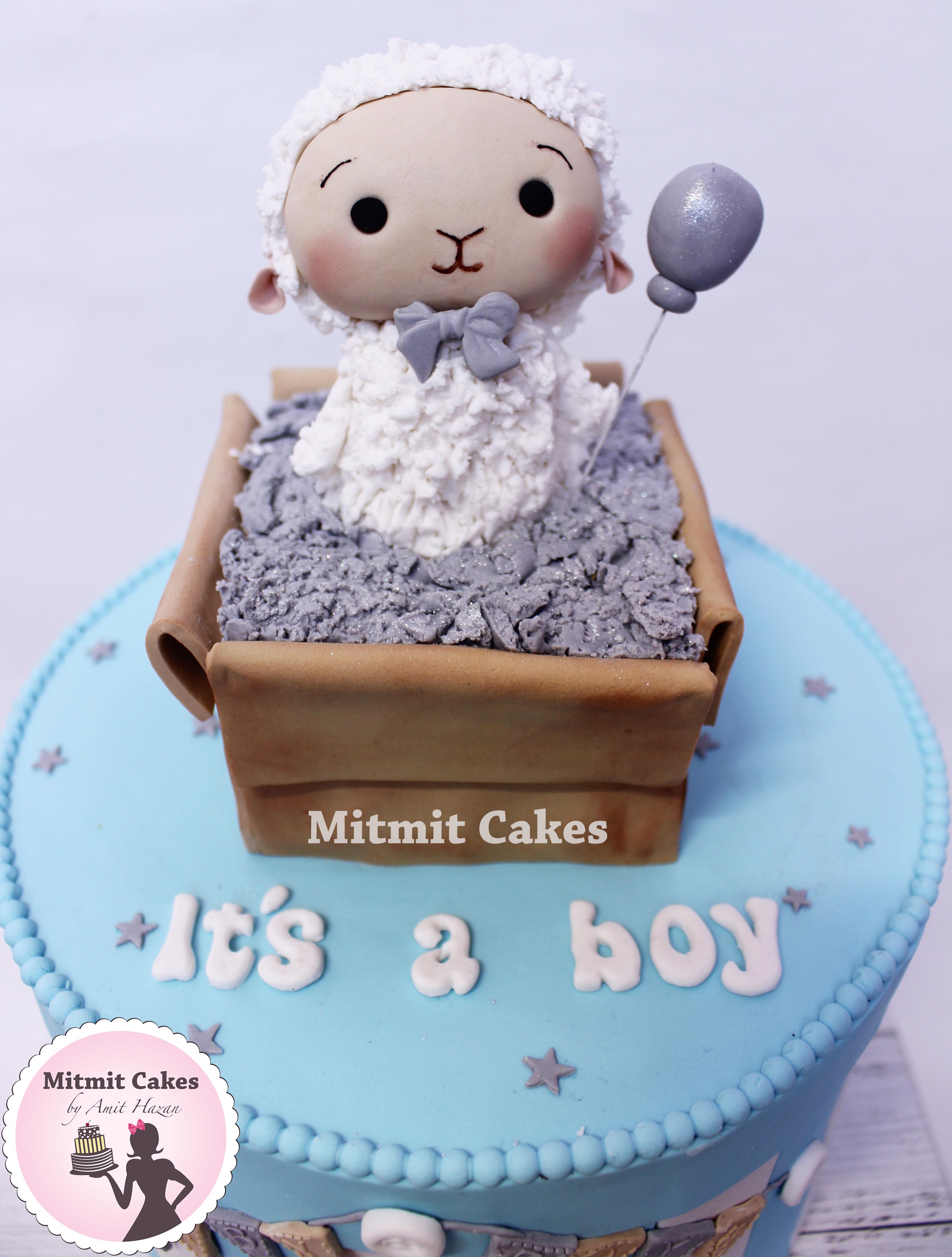 עוגה כבשה לתינוק