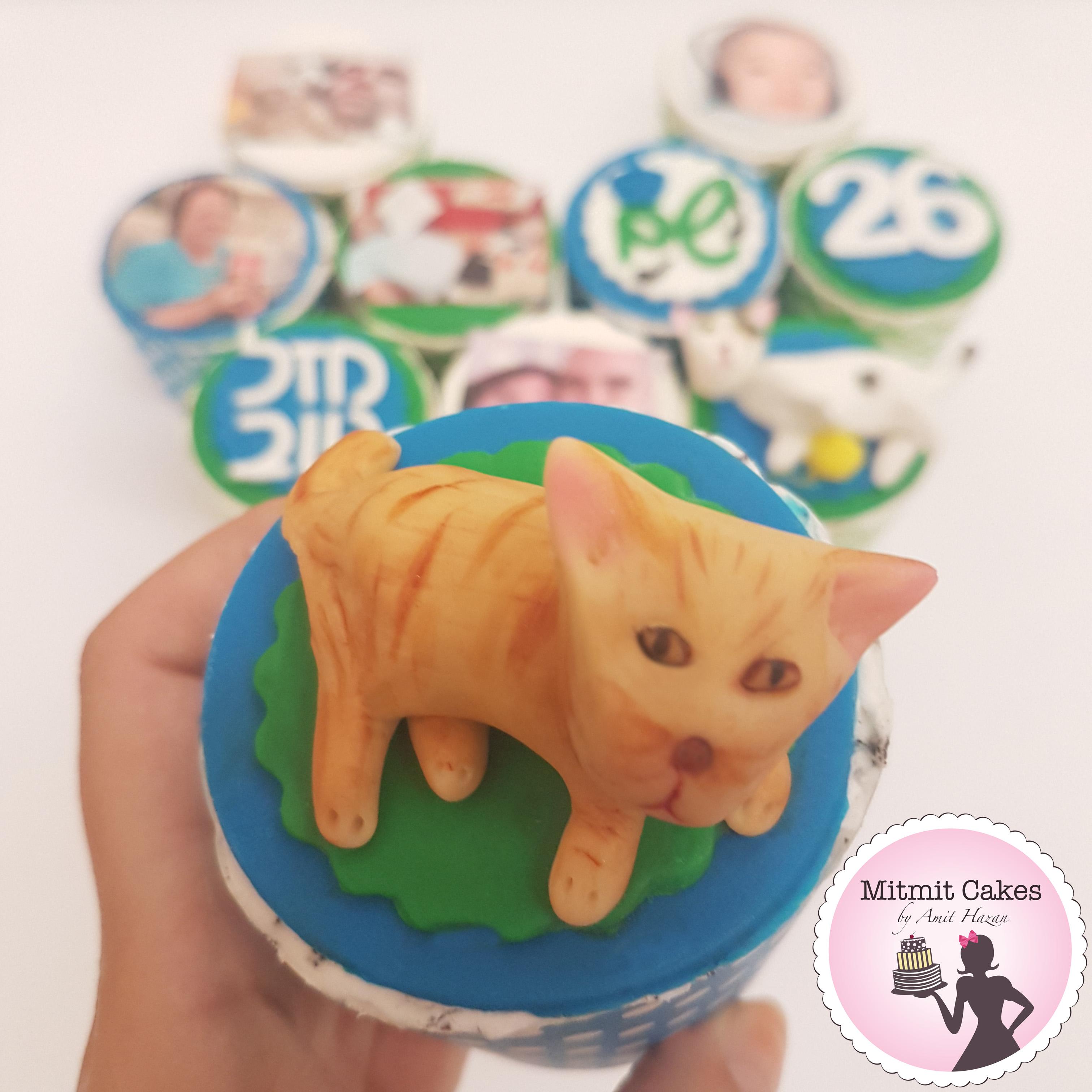 חתול על קאפקייקס