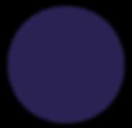 cercle bleu-01.png